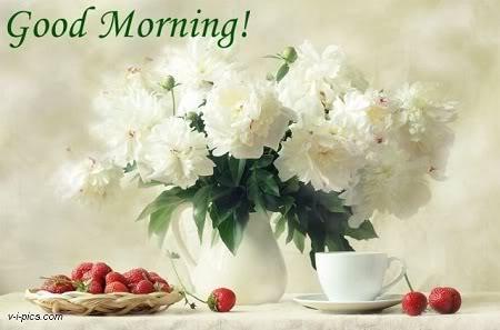Mirëmëngjesi-Mirëmëngjesi! - Faqe 2 ZLeEeoe_GGyZW3EizQZB1ua2ZqQYjdOYG8JvyhPdA2fXwURth4JZdg==
